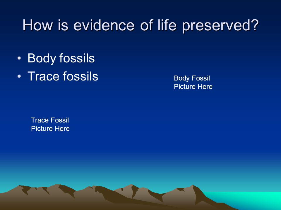 How is evidence of life preserved