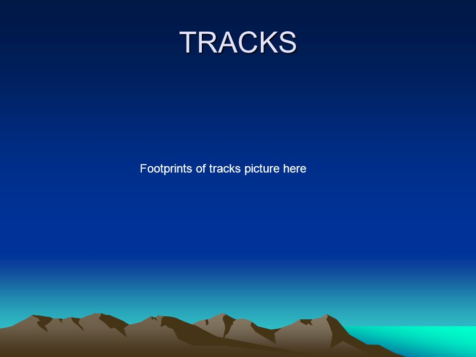 TRACKS Footprints of tracks picture here