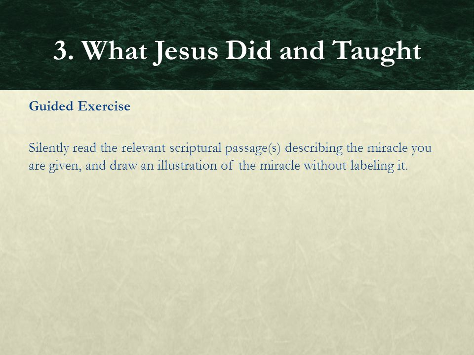 3. What Jesus Did and Taught
