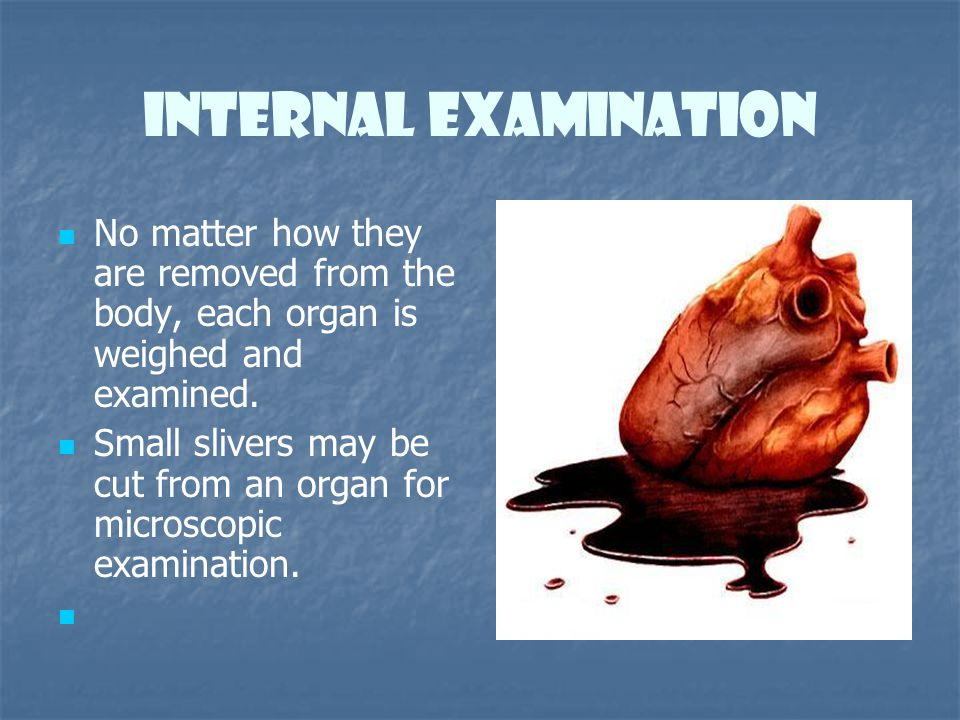 Internal Examination No matter how they are removed from the body, each organ is weighed and examined.