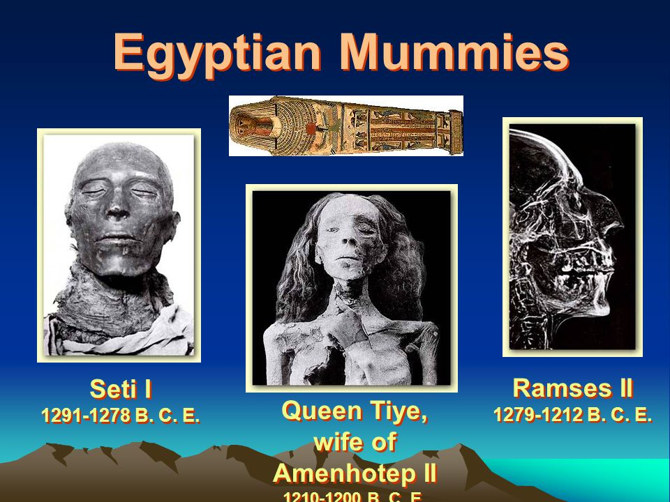 Queen Tiye, wife of Amenhotep II 1210-1200 B. C. E.