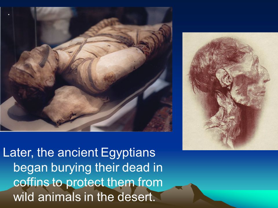 . Later, the ancient Egyptians began burying their dead in coffins to protect them from wild animals in the desert.