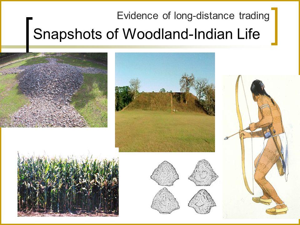 Snapshots of Woodland-Indian Life