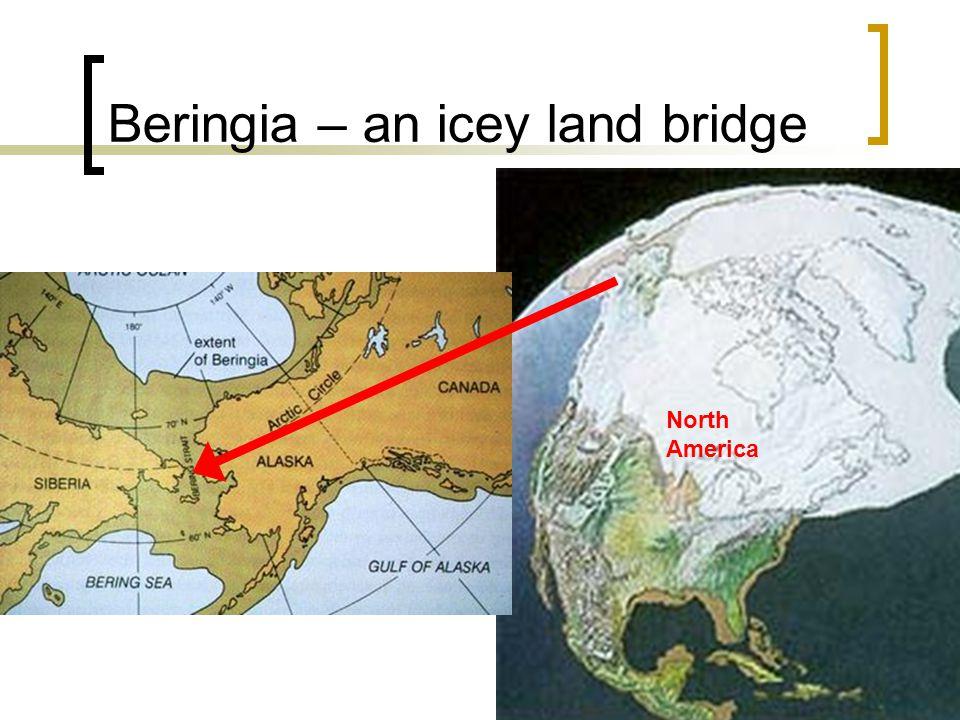 Beringia – an icey land bridge