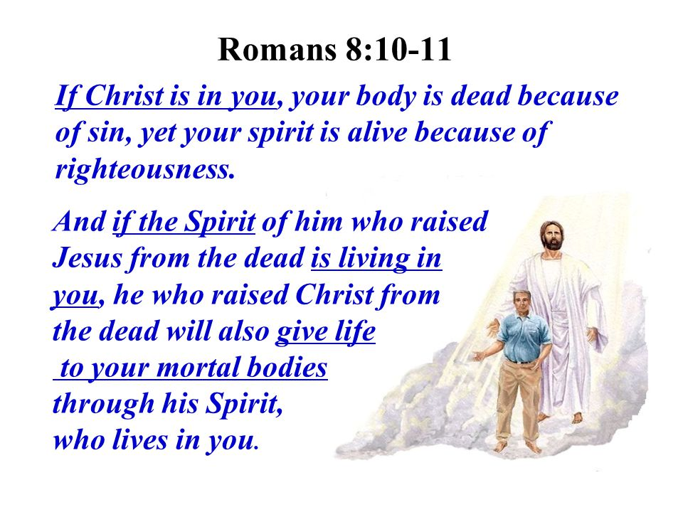 Romans 8:10-11 If Christ is in you, your body is dead because of sin, yet your spirit is alive because of righteousness.
