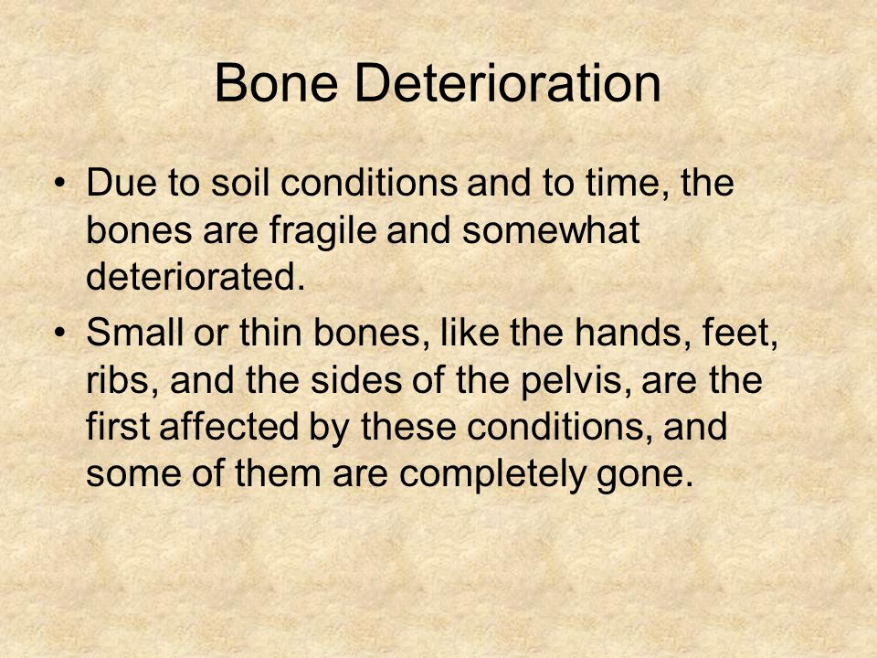 Bone Deterioration Due to soil conditions and to time, the bones are fragile and somewhat deteriorated.