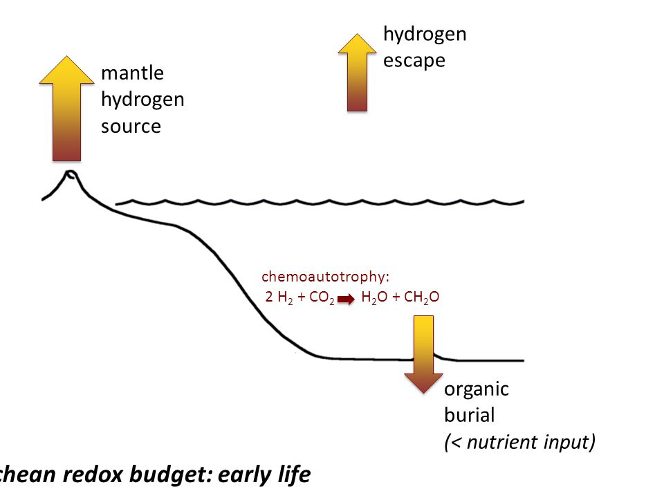 Archean redox budget: early life