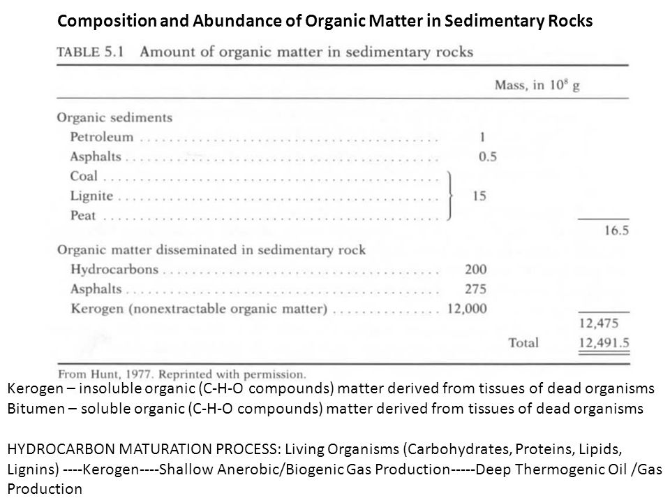 Composition and Abundance of Organic Matter in Sedimentary Rocks