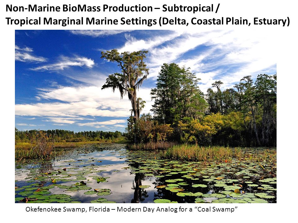 Non-Marine BioMass Production – Subtropical /