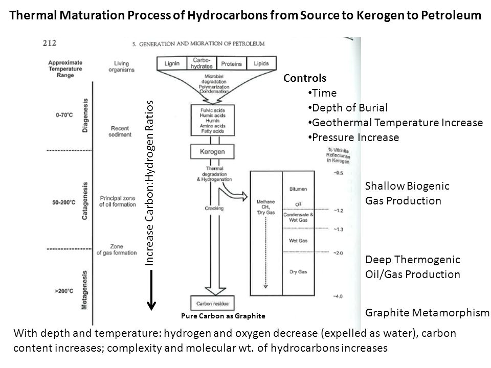 Thermal Maturation Process of Hydrocarbons from Source to Kerogen to Petroleum