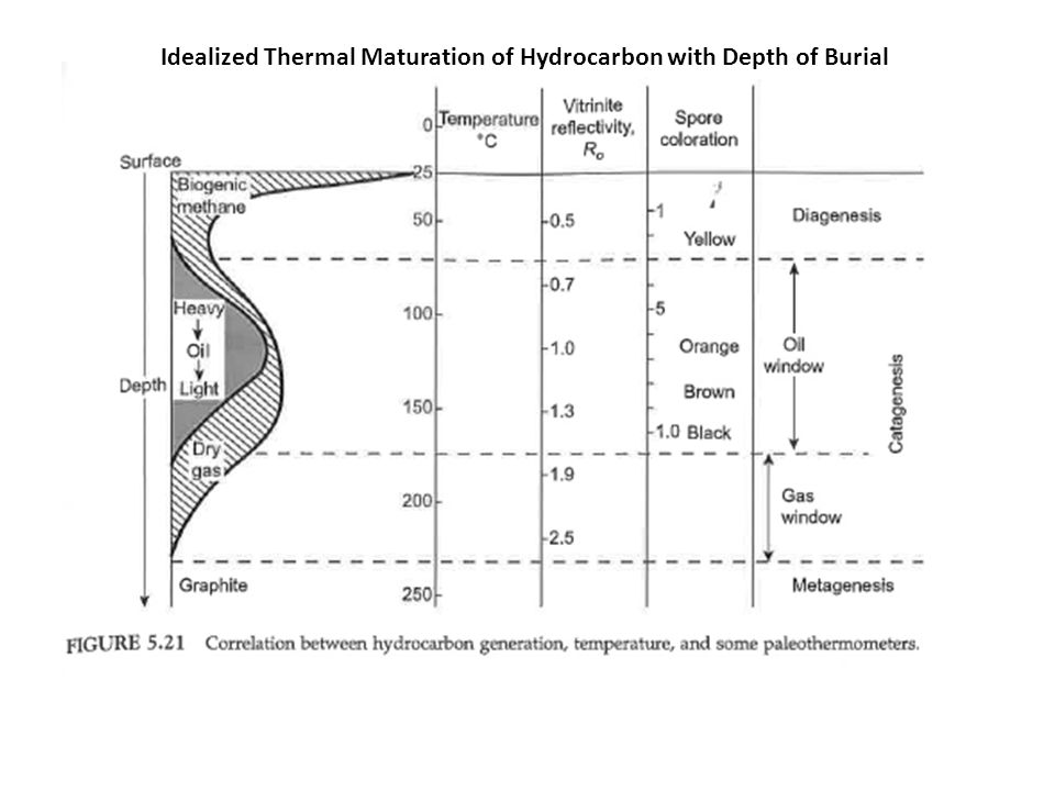 Idealized Thermal Maturation of Hydrocarbon with Depth of Burial