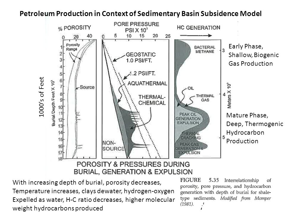 Petroleum Production in Context of Sedimentary Basin Subsidence Model