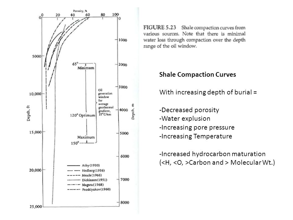 Shale Compaction Curves
