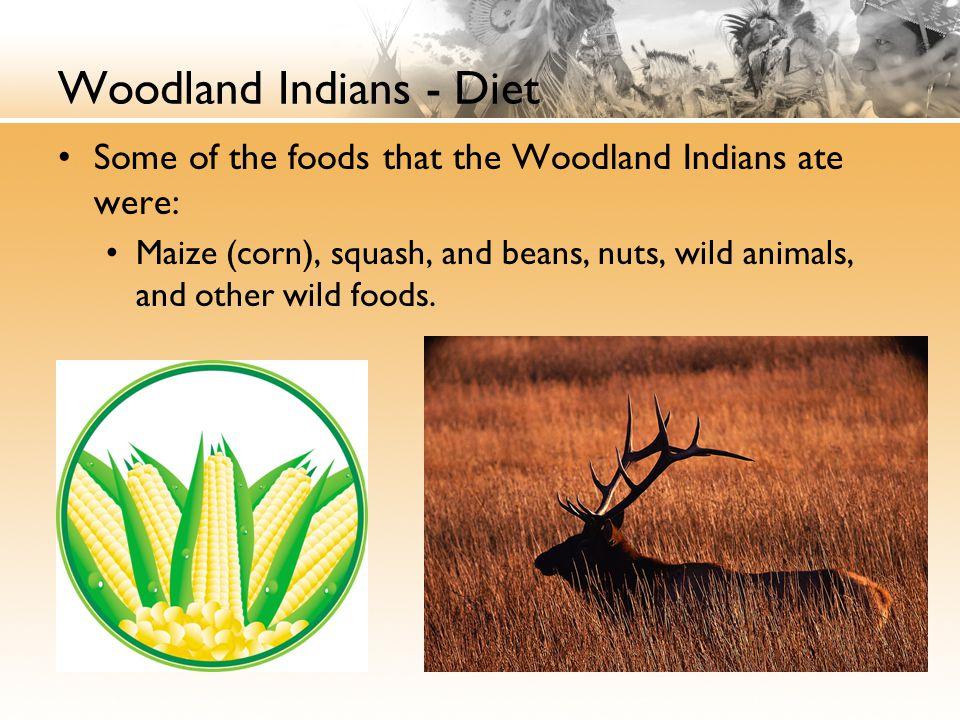 Woodland Indians - Diet
