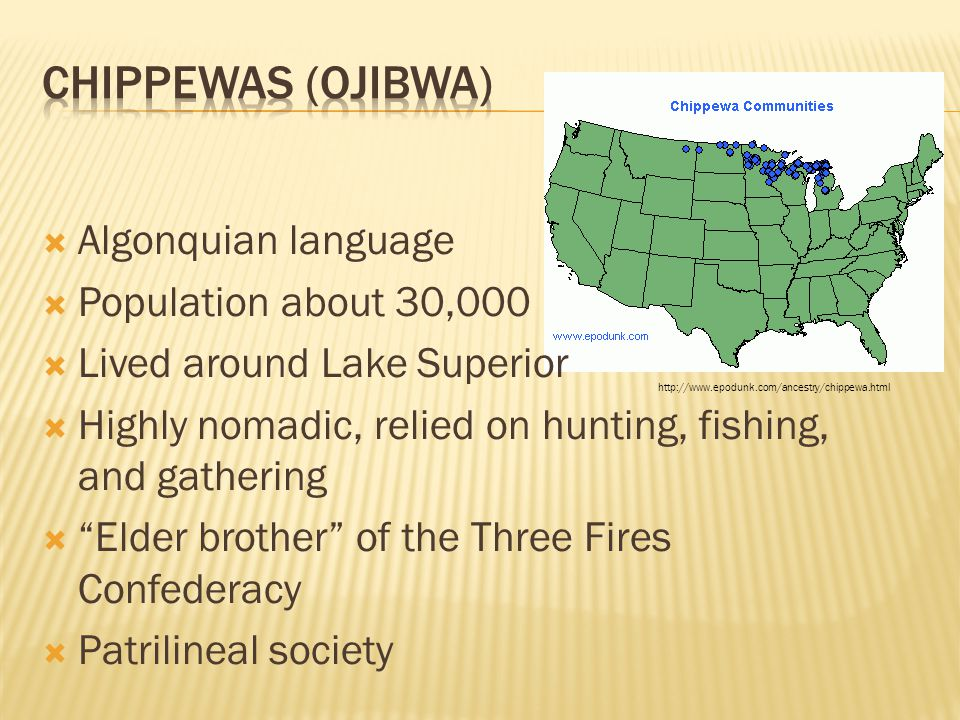 Chippewas (Ojibwa) Algonquian language Population about 30,000