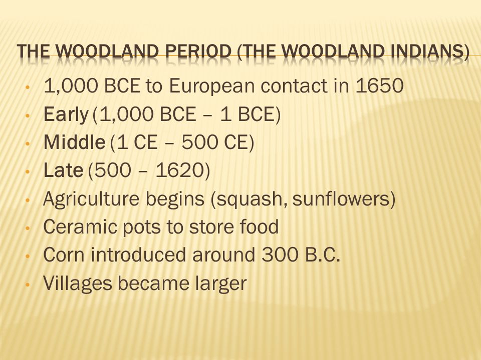 The Woodland Period (The Woodland Indians)