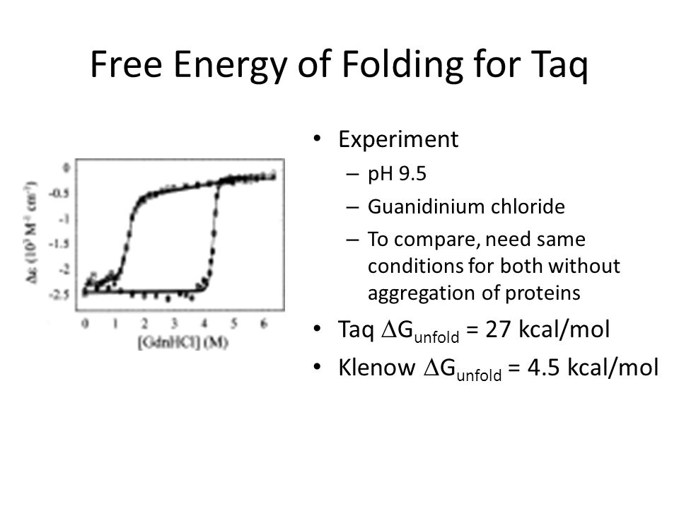 Free Energy of Folding for Taq