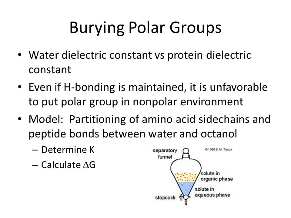 Burying Polar Groups Water dielectric constant vs protein dielectric constant.