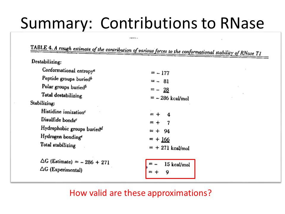 Summary: Contributions to RNase