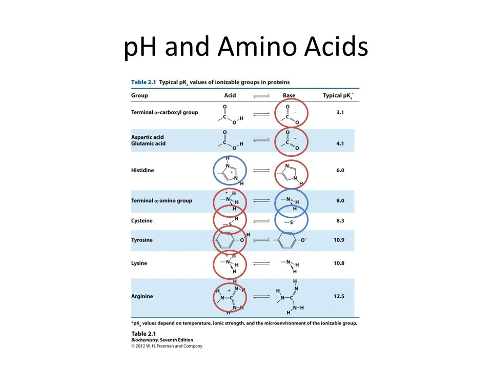 pH and Amino Acids