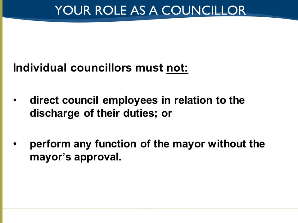 Your role as a councillor