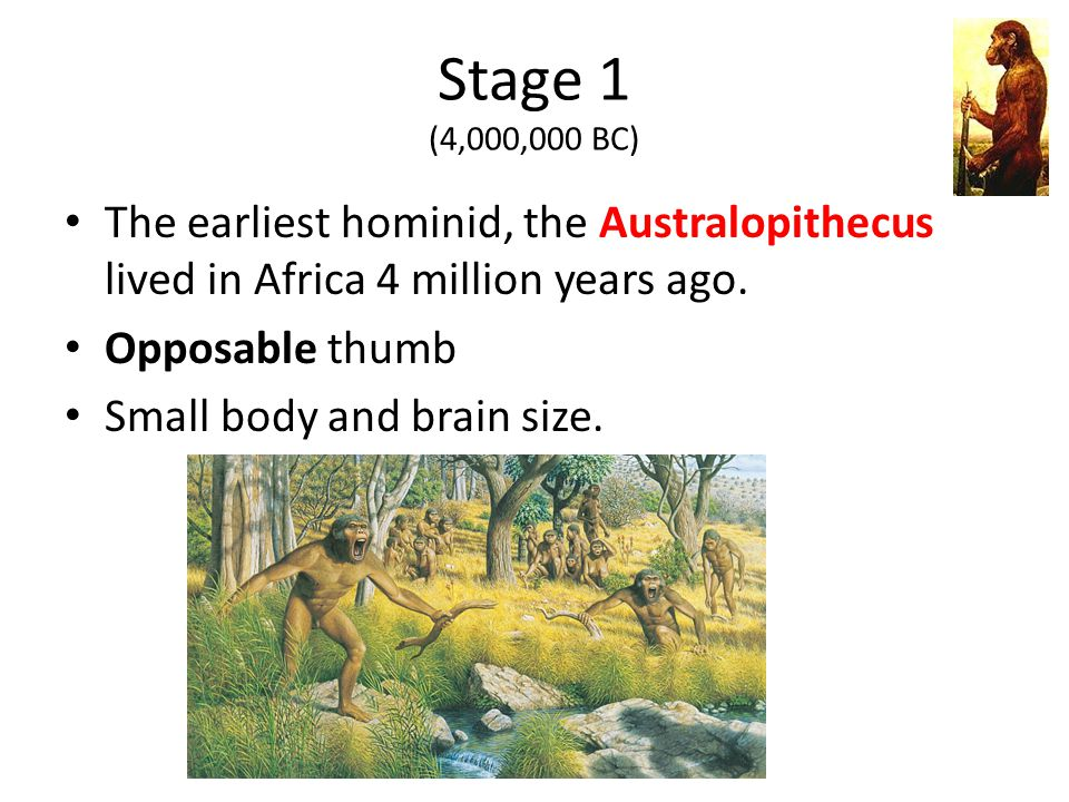 Stage 1 (4,000,000 BC) The earliest hominid, the Australopithecus lived in Africa 4 million years ago.