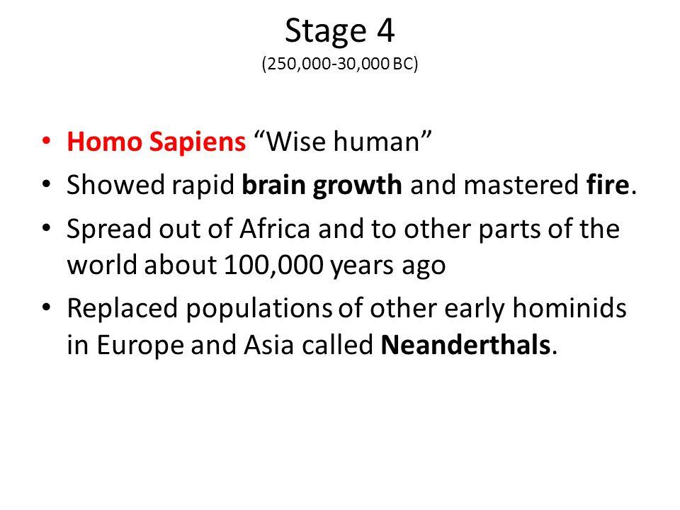 Stage 4 (250,000-30,000 BC) Homo Sapiens Wise human