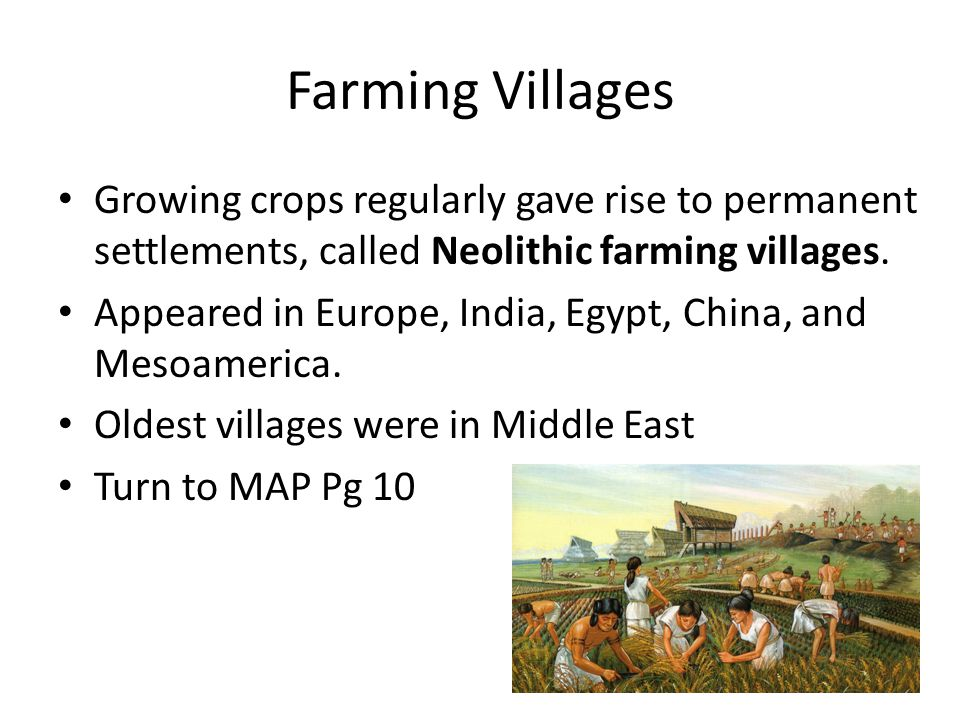 Farming Villages Growing crops regularly gave rise to permanent settlements, called Neolithic farming villages.