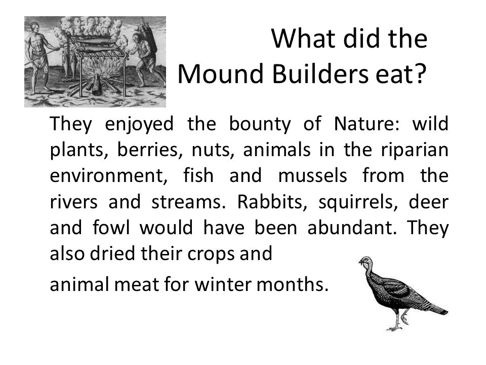 What did the Mound Builders eat