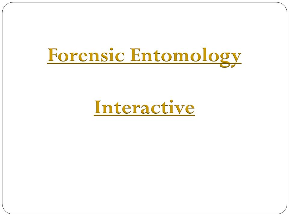 Forensic Entomology Interactive