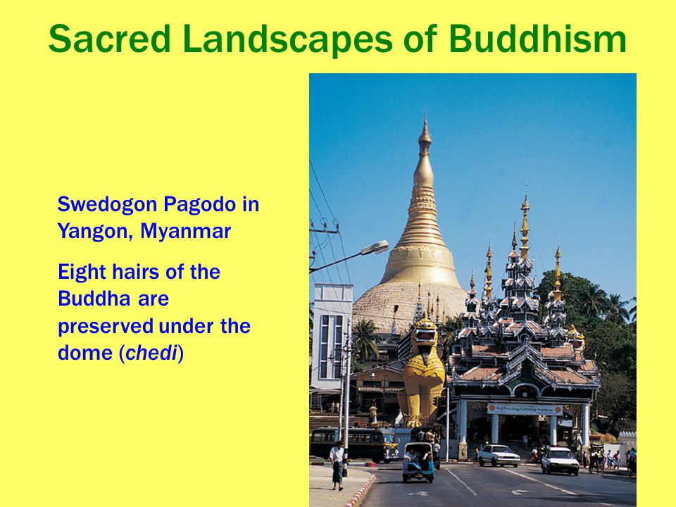 Sacred Landscapes of Buddhism