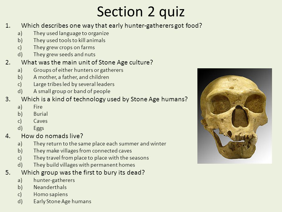 Section 2 quiz Which describes one way that early hunter-gatherers got food They used language to organize.