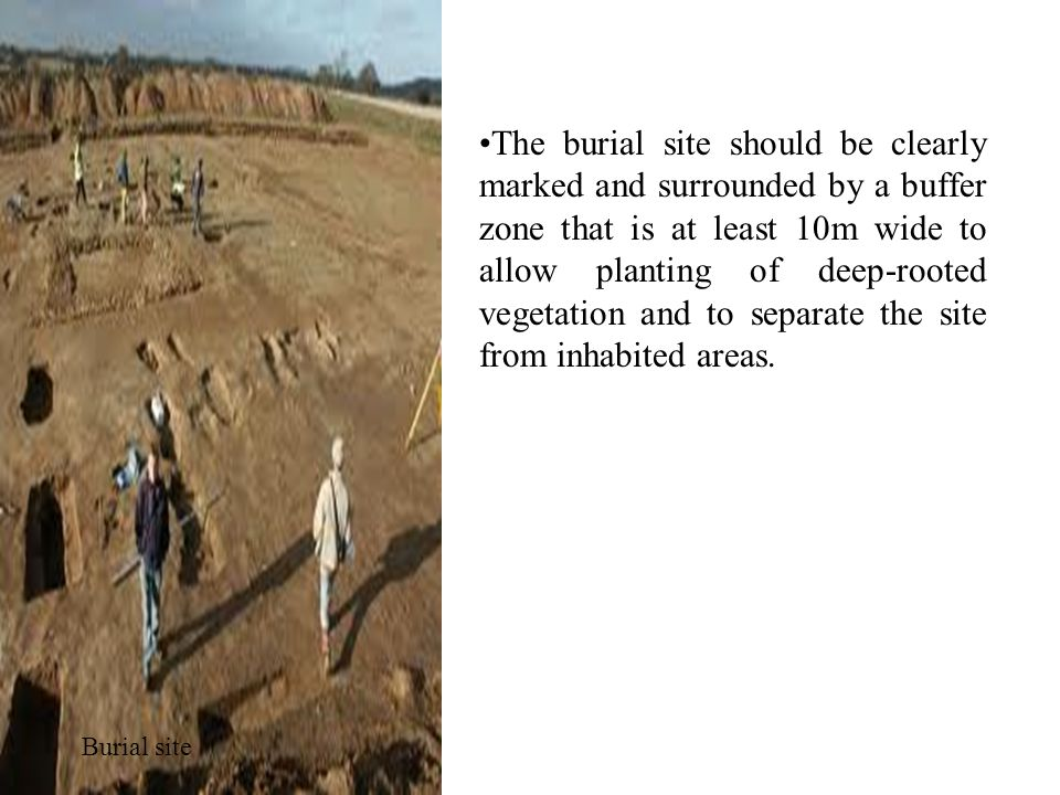 The burial site should be clearly marked and surrounded by a buffer zone that is at least 10m wide to allow planting of deep-rooted vegetation and to separate the site from inhabited areas.