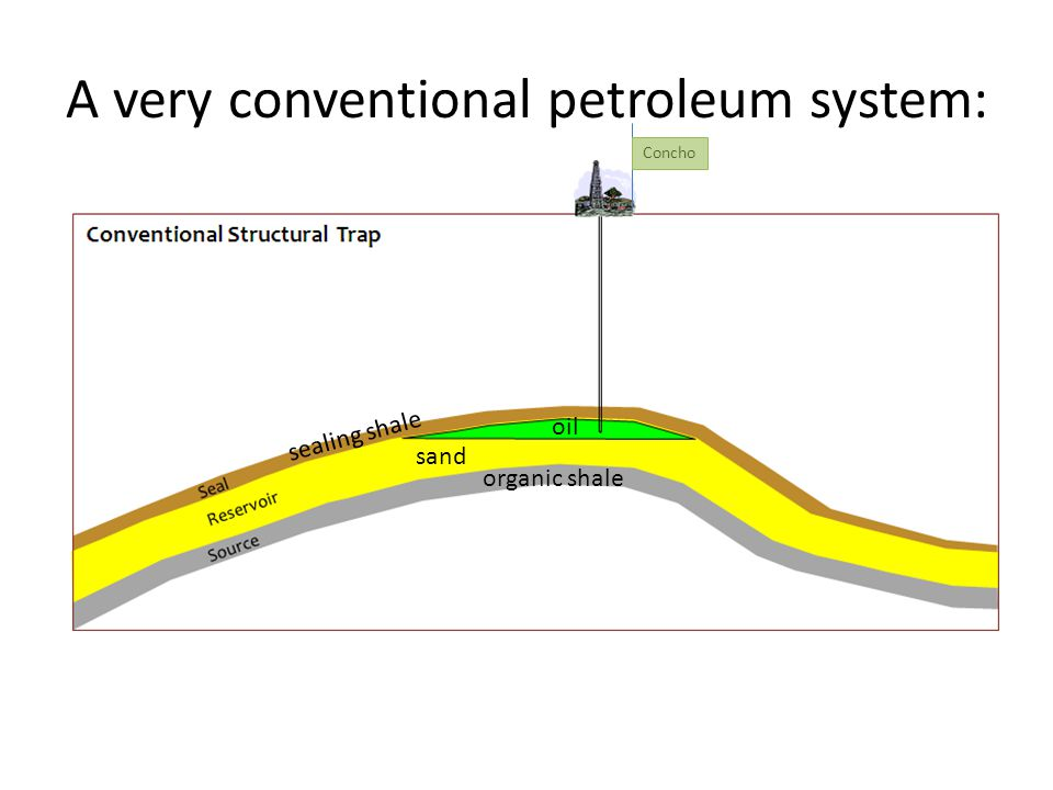 A very conventional petroleum system: