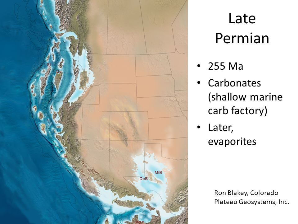 Late Permian 255 Ma Carbonates (shallow marine carb factory)