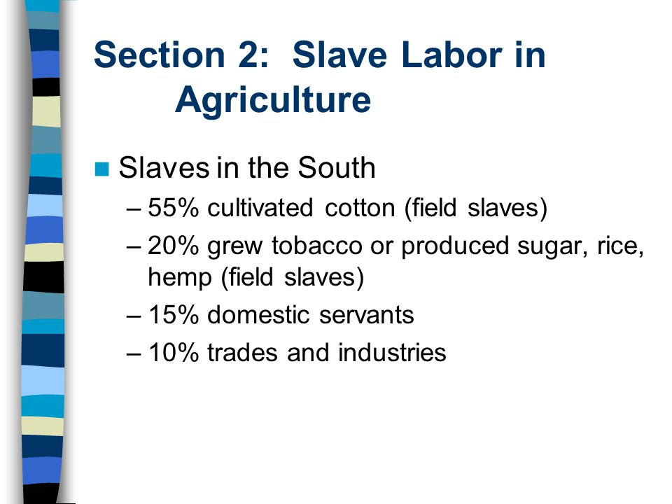 Section 2: Slave Labor in Agriculture