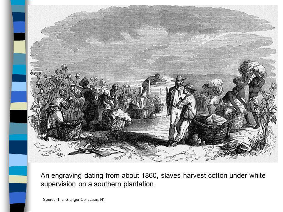 An engraving dating from about 1860, slaves harvest cotton under white supervision on a southern plantation.