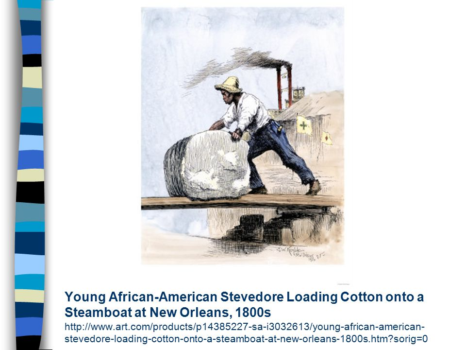 Young African-American Stevedore Loading Cotton onto a Steamboat at New Orleans, 1800s http://www.art.com/products/p14385227-sa-i3032613/young-african-american-stevedore-loading-cotton-onto-a-steamboat-at-new-orleans-1800s.htm sorig=0