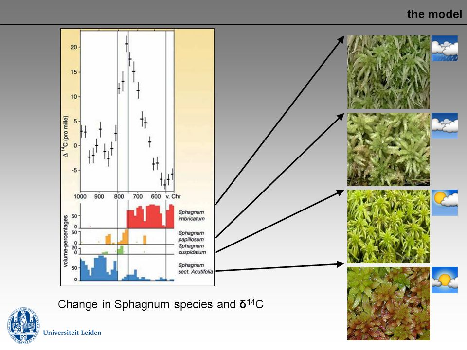 the model Change in Sphagnum species and δ14C