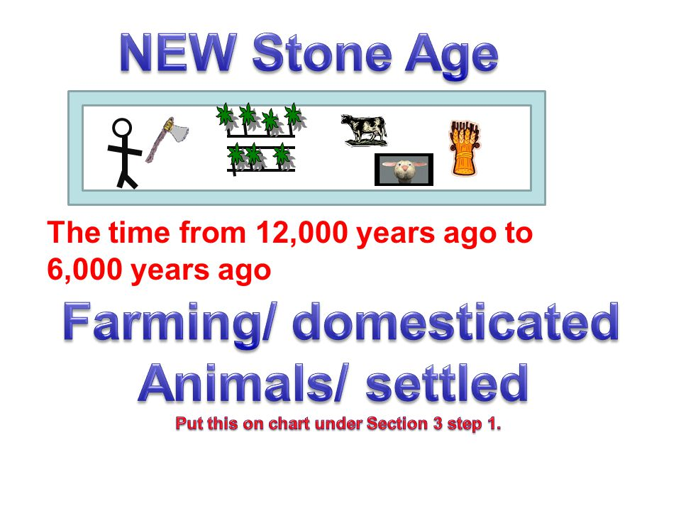 Farming/ domesticated Put this on chart under Section 3 step 1.