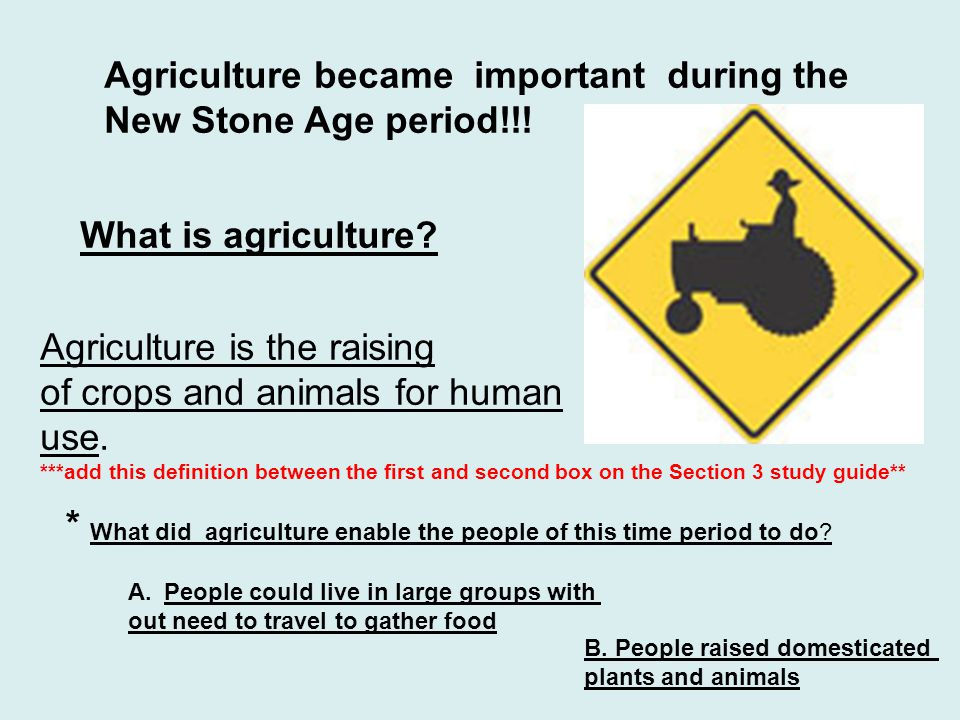 Agriculture became important during the New Stone Age period!!!