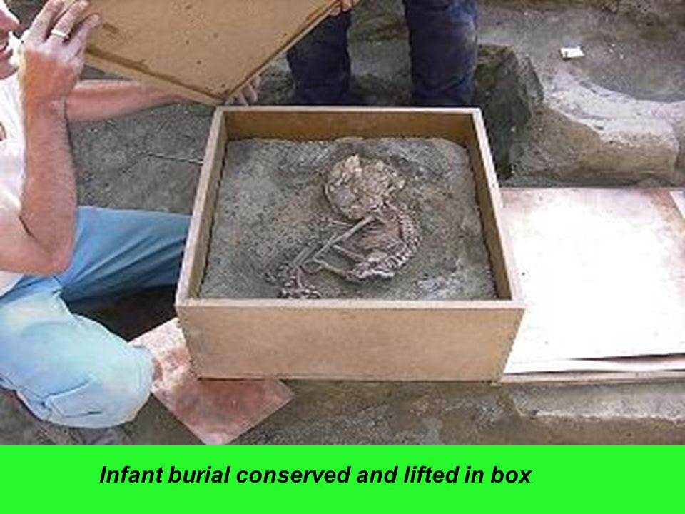 Infant burial conserved and lifted in box,
