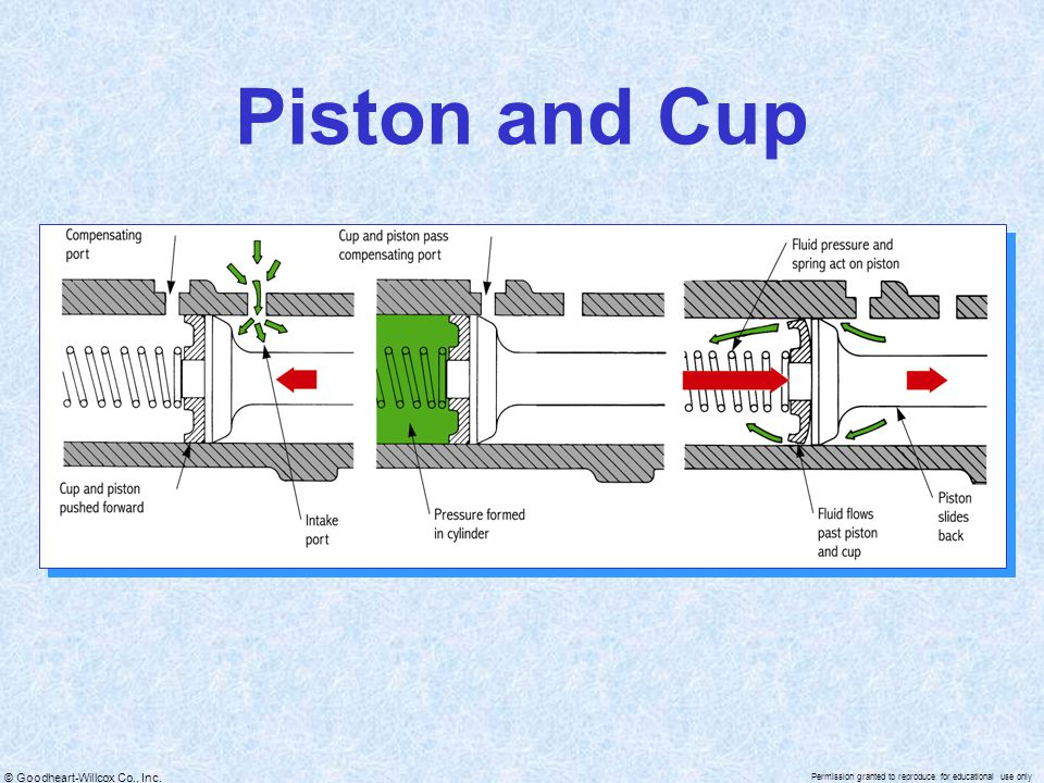 Piston and Cup