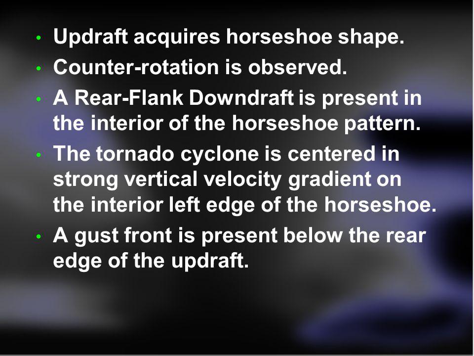 Updraft acquires horseshoe shape.