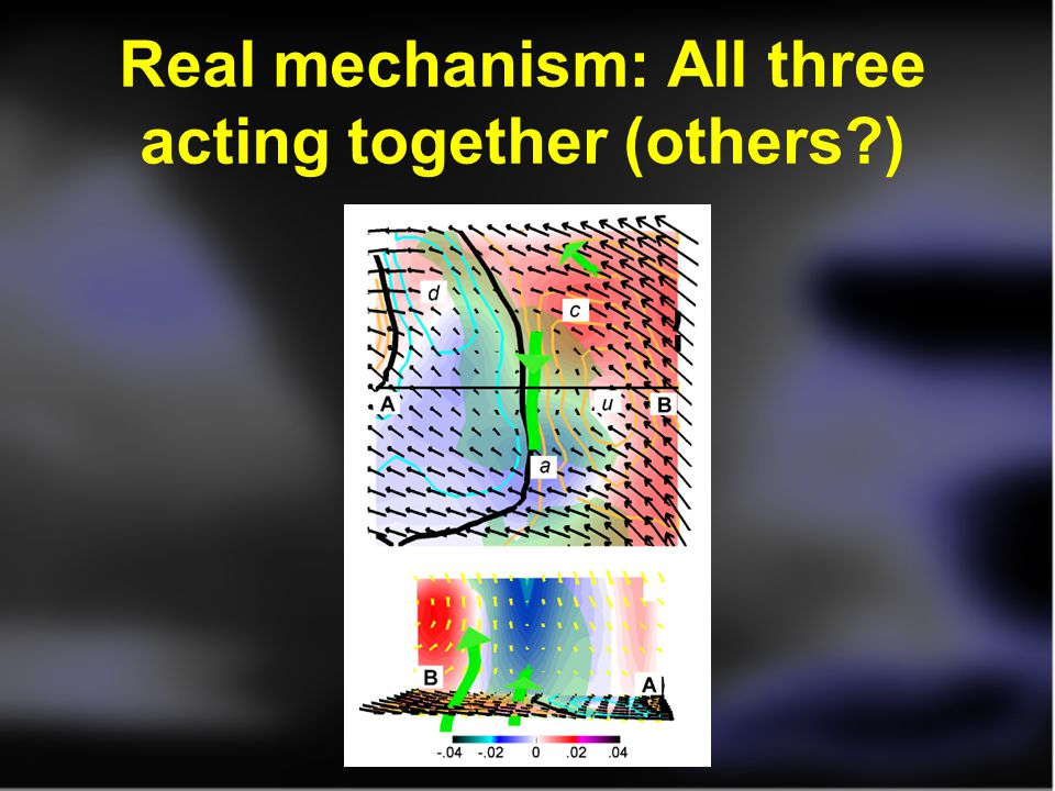 Real mechanism: All three acting together (others )‏