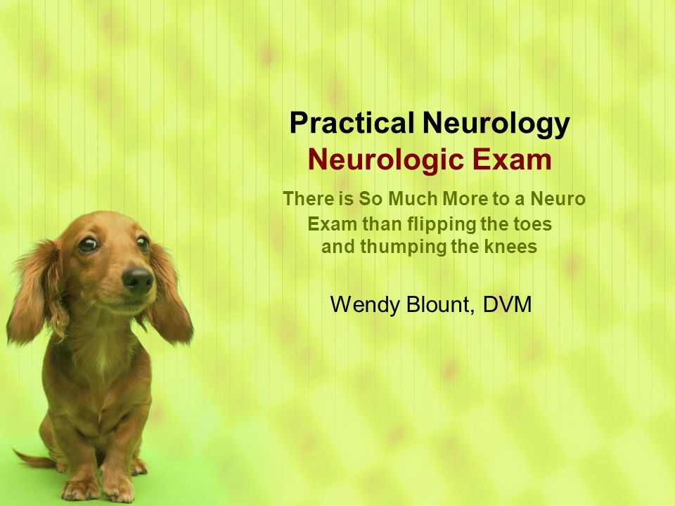 Practical Neurology Neurologic Exam There is So Much More to a Neuro Exam than flipping the toes and thumping the knees