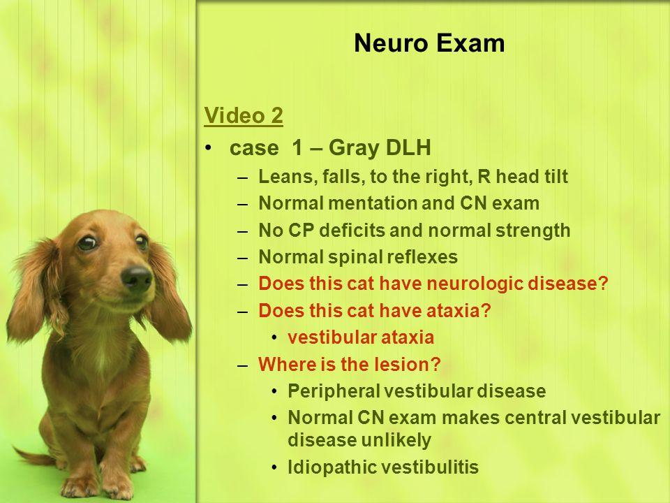 Neuro Exam Video 2 case 1 – Gray DLH
