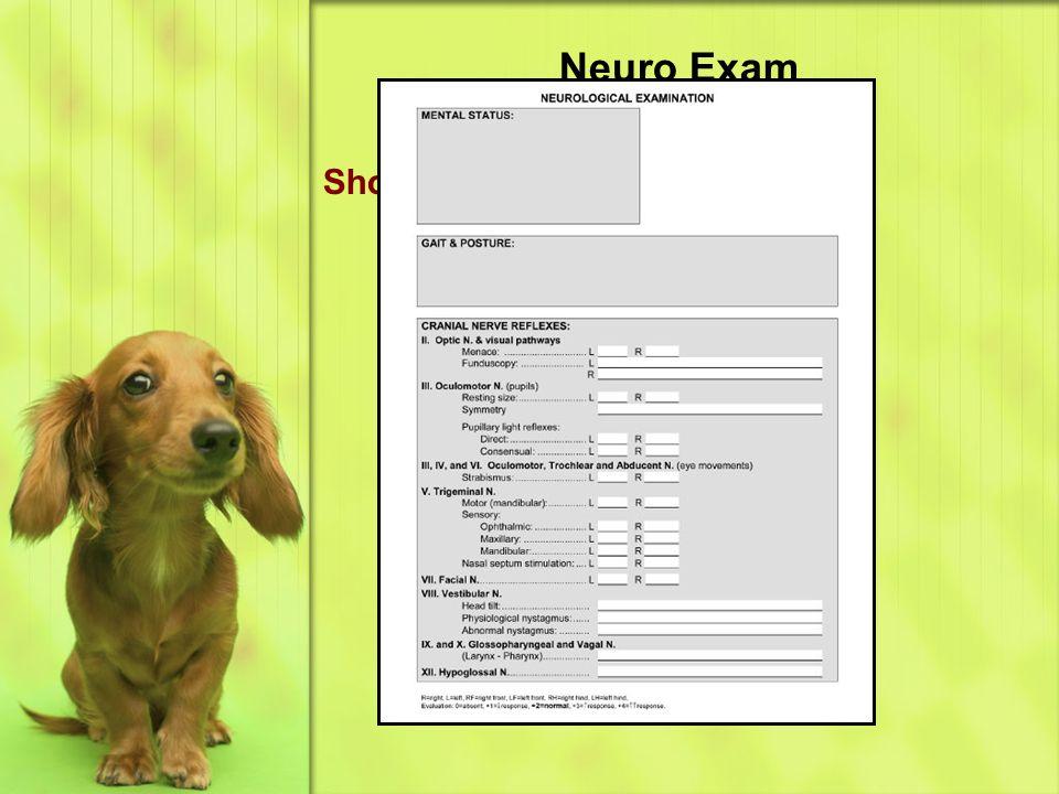 Neuro Exam Short neuro form