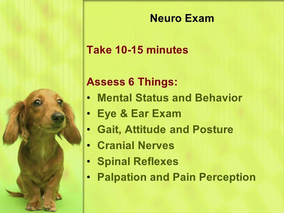 Neuro Exam Take 10-15 minutes. Assess 6 Things: Mental Status and Behavior. Eye & Ear Exam. Gait, Attitude and Posture.