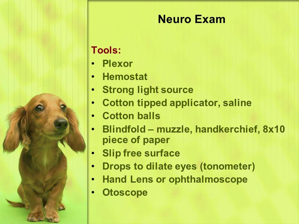 Neuro Exam Tools: Plexor Hemostat Strong light source